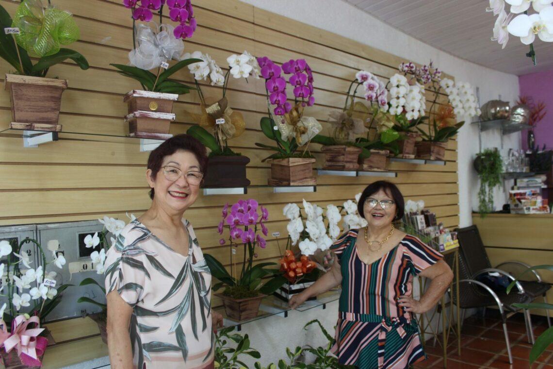 Ikebana à brasileira