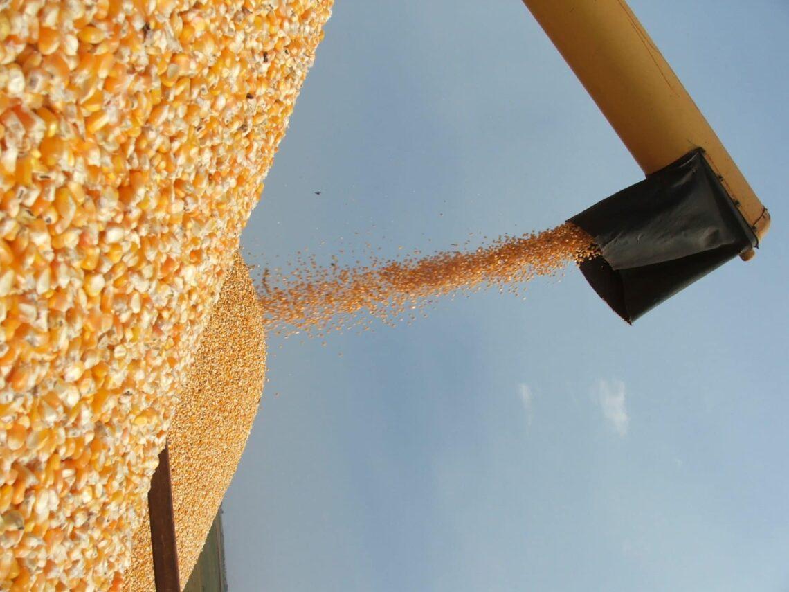 Baixo estoque de soja impulsiona mercado