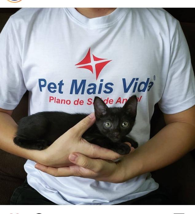 Plano de Saúde para seu pet já é uma realidade em Maringá!