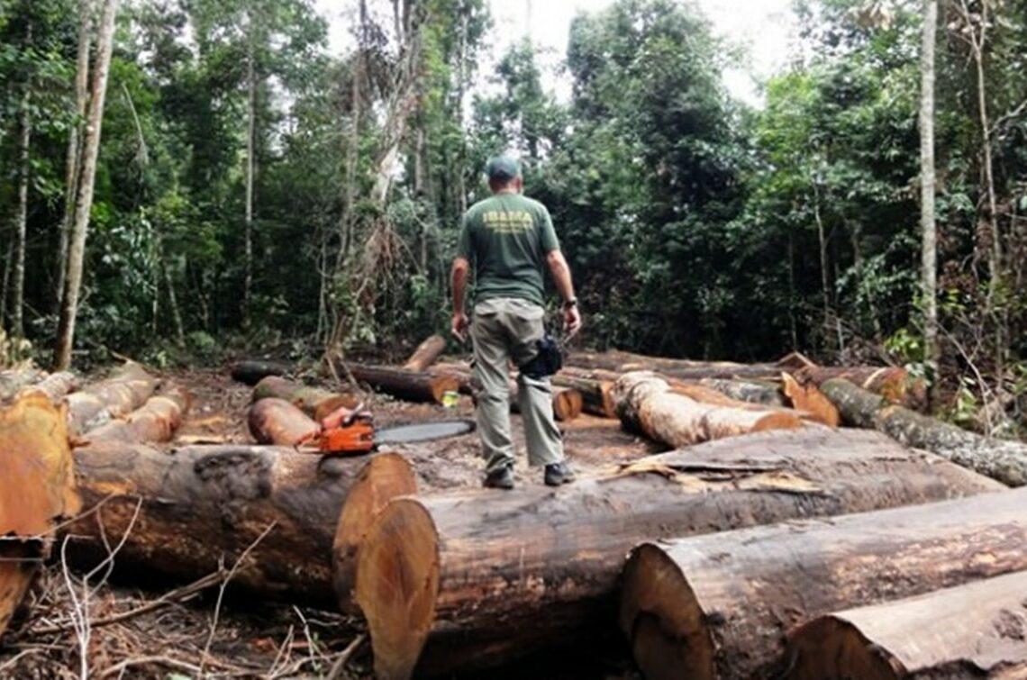 Antena multissatelital auxiliará na preservação ambiental da Amazônia