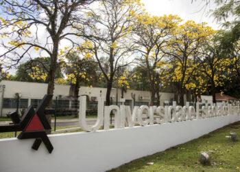 Núcleo de estudos da UEM está com inscrições abertas para selecionar profissionais e estudantes de direito e psicologia