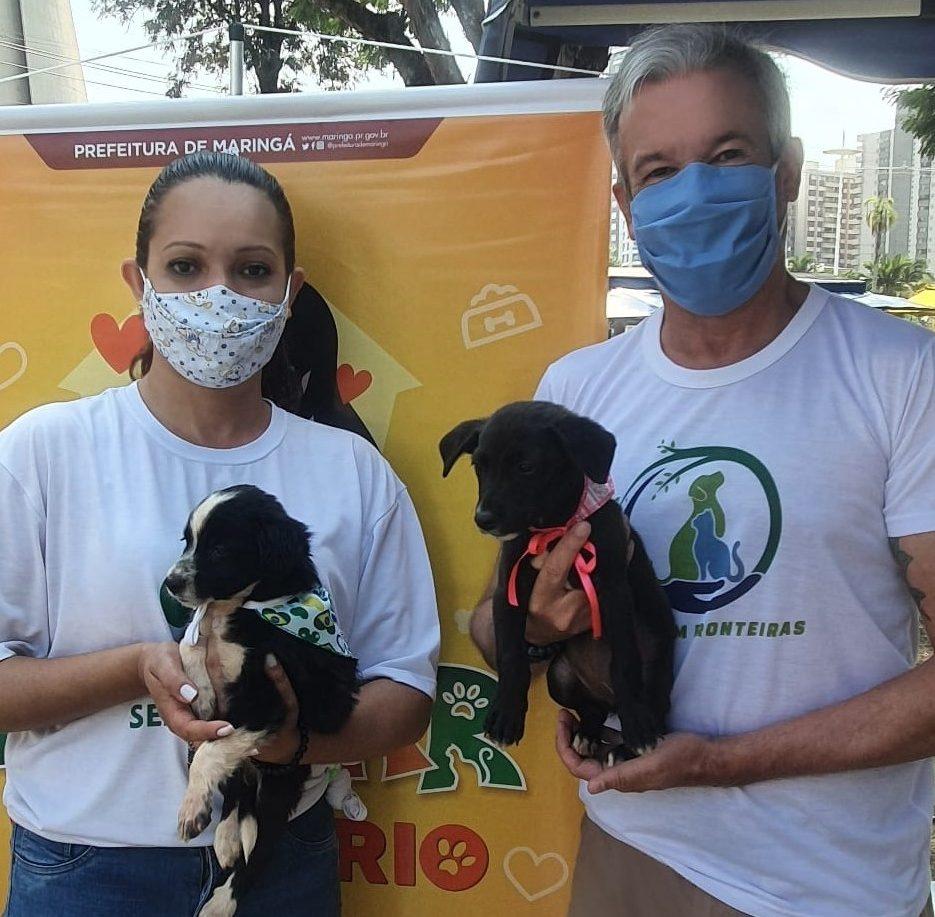 Francielle Angelica Alves, nos conta como é seu trabalho como gerente da Diretoria de Proteção e Bem-Estar Animal de Maringá