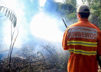 Dois grandes incêndios foram registrados em Maringá na terça-feira (28)