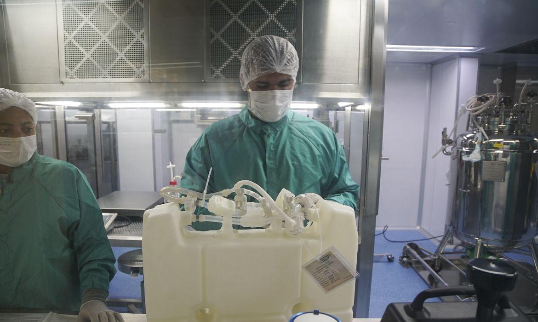 Fiocruz recebe amanhã novo lote de IFA para fabricar 5,2 milhões de doses de vacinas